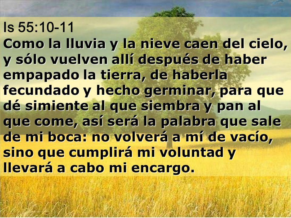 Salir INICIO de la WEB Señor, al despertar me saciaré de tu presencia. Sal 16: 15