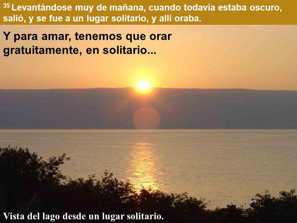 35 Levantándose muy de mañana, cuando todavía estaba oscuro, salió, y se fue a un lugar solitario, y allí oraba.
