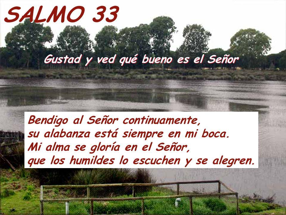 SALMO 33 Gustad y ved qué bueno es el Señor Gustad y ved qué bueno es el Señor Bendigo al Señor continuamente, su alabanza está siempre en mi boca.