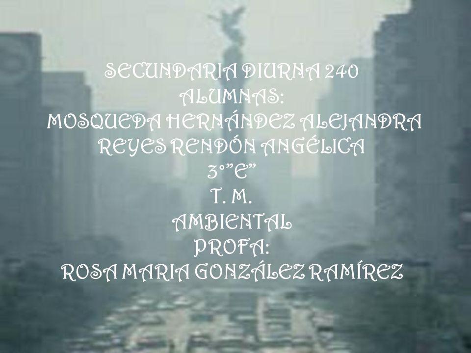 SECUNDARIA DIURNA 240 ALUMNAS: MOSQUEDA HERNÁNDEZ ALEJANDRA REYES RENDÓN ANGÉLICA 3°E T. M. AMBIENTAL PROFA: ROSA MARIA GONZÁLEZ RAMÍREZ