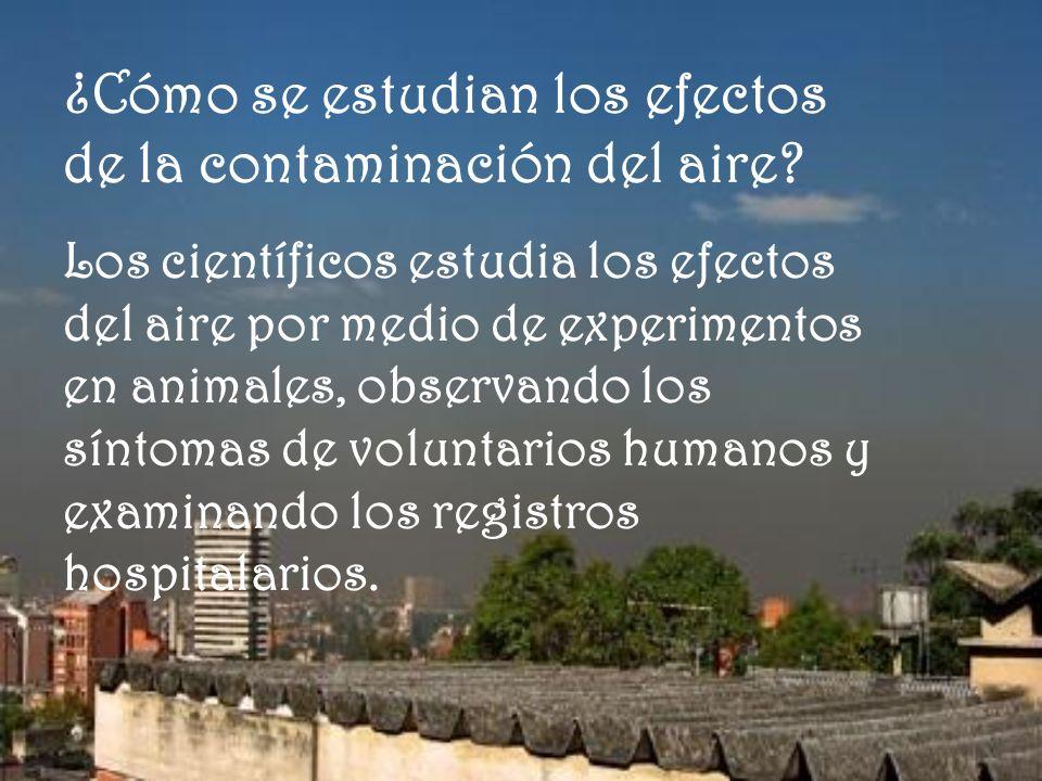 ¿Cómo se estudian los efectos de la contaminación del aire? Los científicos estudia los efectos del aire por medio de experimentos en animales, observ