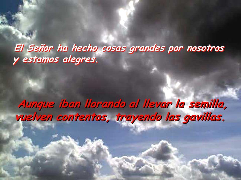 ¡Cambia, Señor, nuestra suerte como cambian los torrentes del Negueb!. Los que sembraban con lágrimas, cosechan entre canciones.