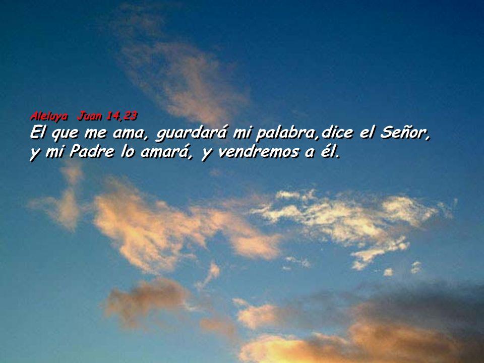 Ap 21,10-14. 22-23 Me trasladó en espíritu a un monte grande y alto y me mostró la Ciudad Santa de Jerusalén, que bajaba del cielo, de junto a Dios, y