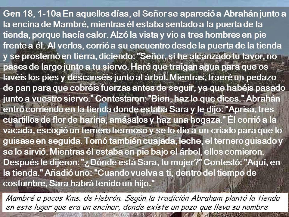 Ciclo C Domingo 16 21 de julio de 2013 Sor Marie Keyrouz, canta la belleza de la Morada Pascual, según la liturgia Bizantina