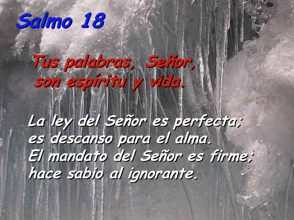 Salmo 18 Tus palabras, Señor, son espíritu y vida.