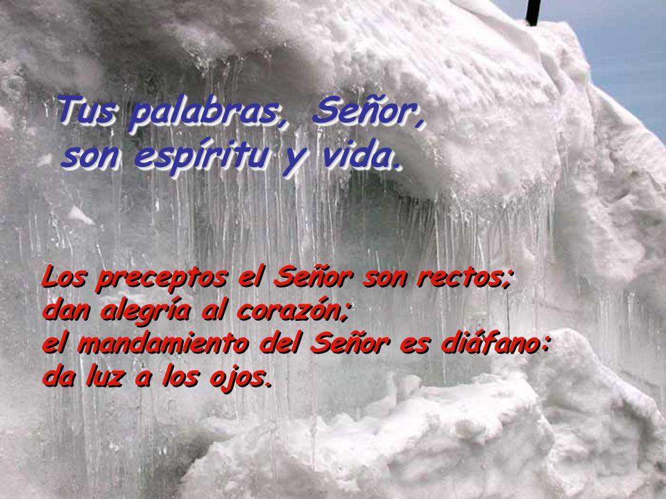 Salmo 18 Tus palabras, Señor, son espíritu y vida. La ley del Señor es perfecta; es descanso para el alma. El mandato del Señor es firme; hace sabio a