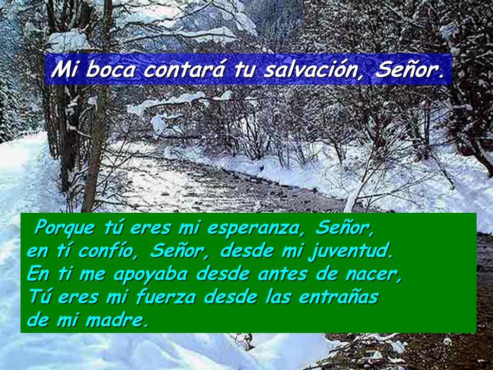 Mi boca contará tu salvación, Señor. Sé para mí una roca de refugio, una fortaleza donde me salve, pues tú eres mi roca y mi fortaleza. Sé para mí una