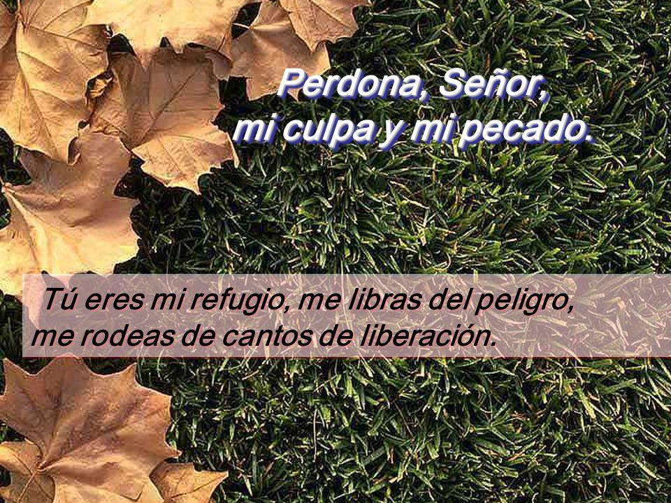 Perdona, Señor, mi culpa y mi pecado. Pero reconocí ante ti mi pecado, no te encubrí mi falta; me dije: Confesaré al Señor mis culpas. Y tú perdonaste