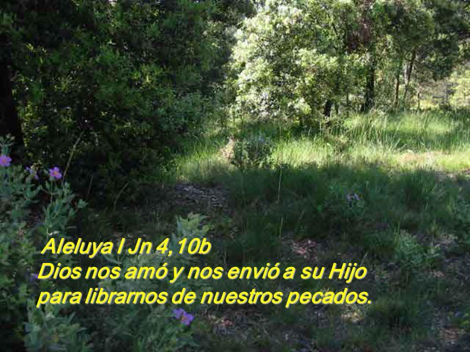 Ga 2,16.19-21 Hermanos: sabemos que el hombre no se justifica por las obras de la ley sino sólo por la fe en Jesucristo, también nosotros hemos creído