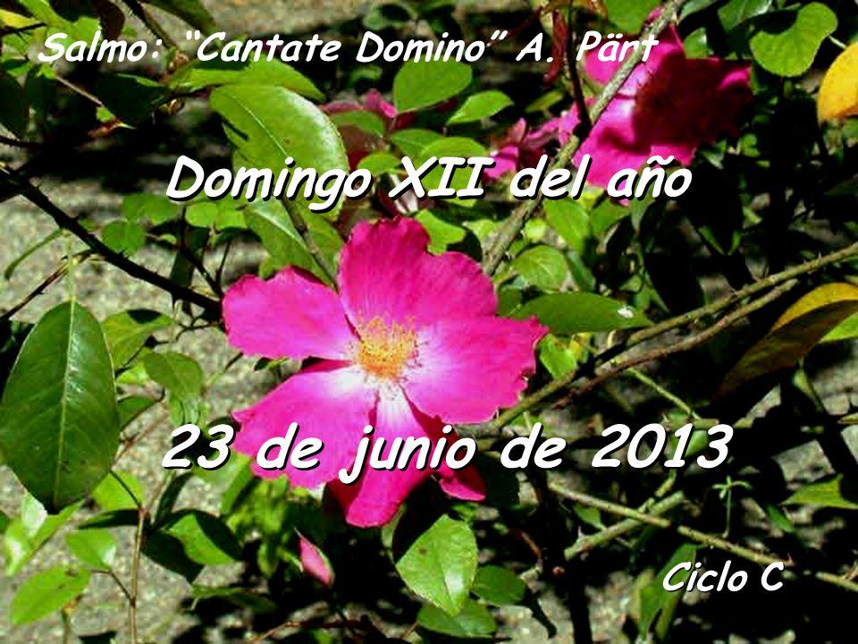 Ciclo C Domingo XII del año 23 de junio de 2013 Salmo: Cantate Domino A. Pärt