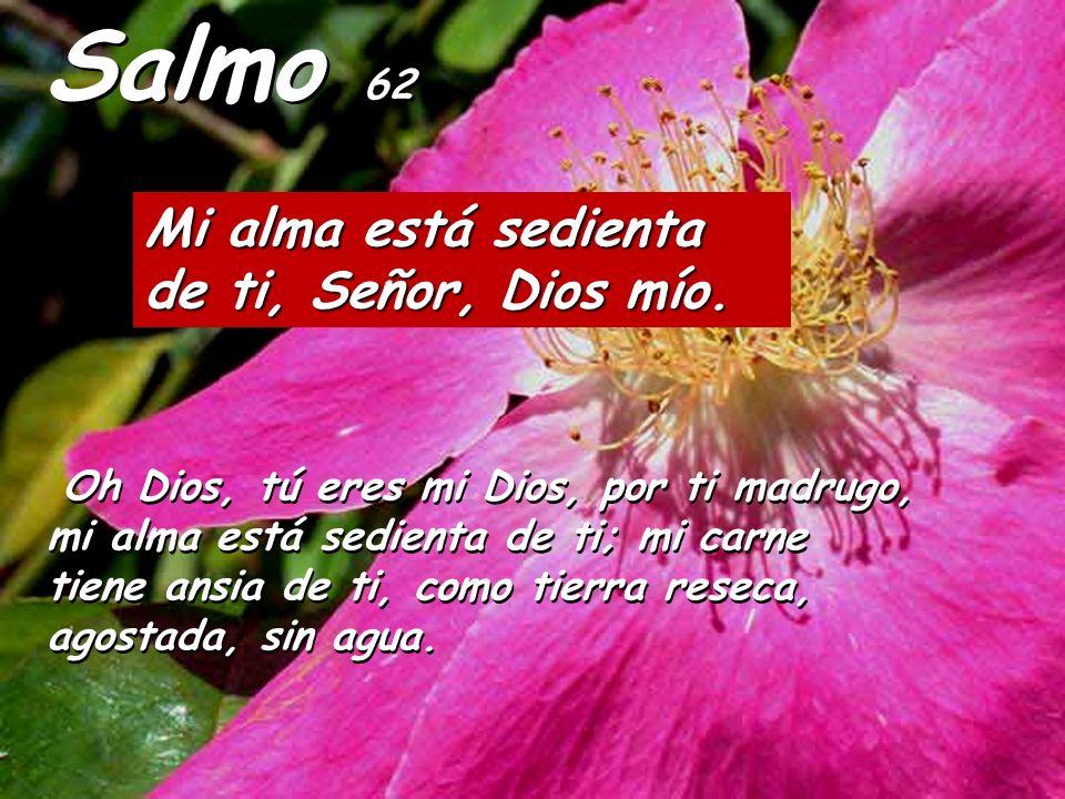 Za 12:10-11 Mirarán al que atravesaron Así dice el Señor: