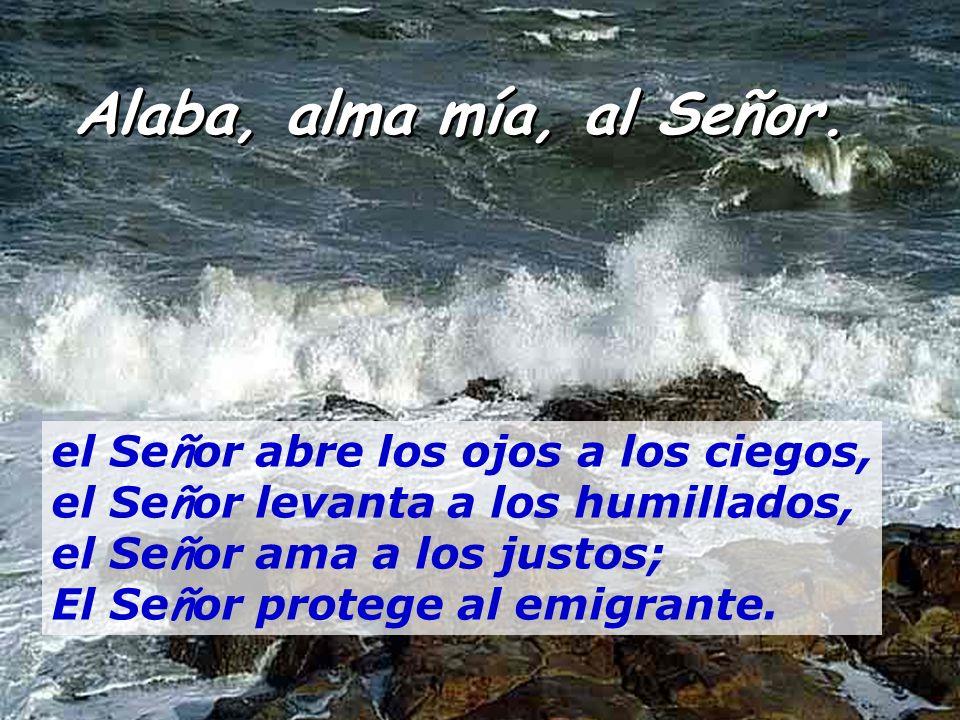 Salmo 145 Alaba, alma mía, a Señor. É l hace justicia a los oprimidos, y da pan a los hambrientos. El Se ñ or da libertad a los cautivos.