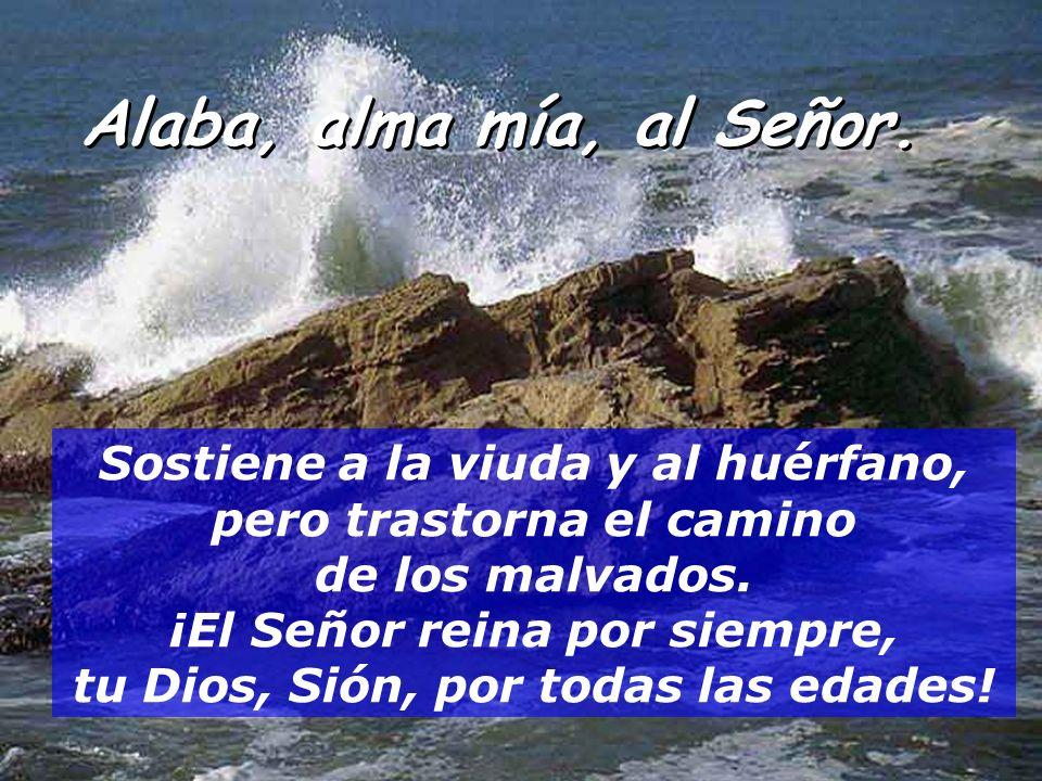 Alaba, alma mía, al Señor. el Se ñ or abre los ojos a los ciegos, el Se ñ or levanta a los humillados, el Se ñ or ama a los justos; El Se ñ or protege