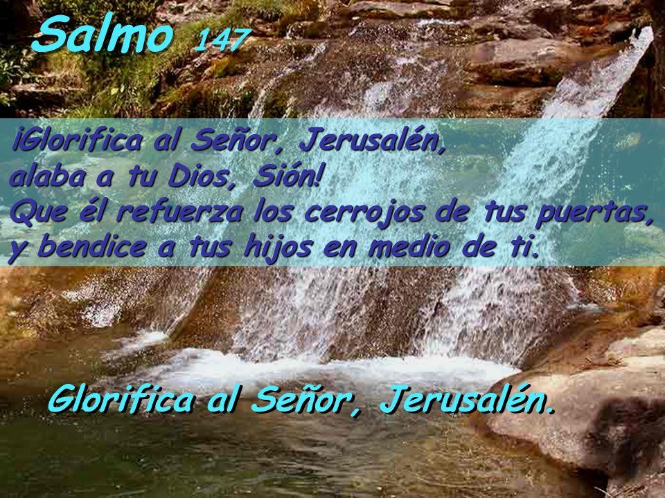Salmo 147 ¡Glorifica al Señor, Jerusalén, alaba a tu Dios, Sión.