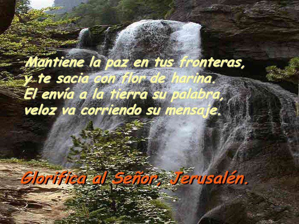 Salmo 147 ¡Glorifica al Señor, Jerusalén, alaba a tu Dios, Sión! Que él refuerza los cerrojos de tus puertas, y bendice a tus hijos en medio de ti. ¡G