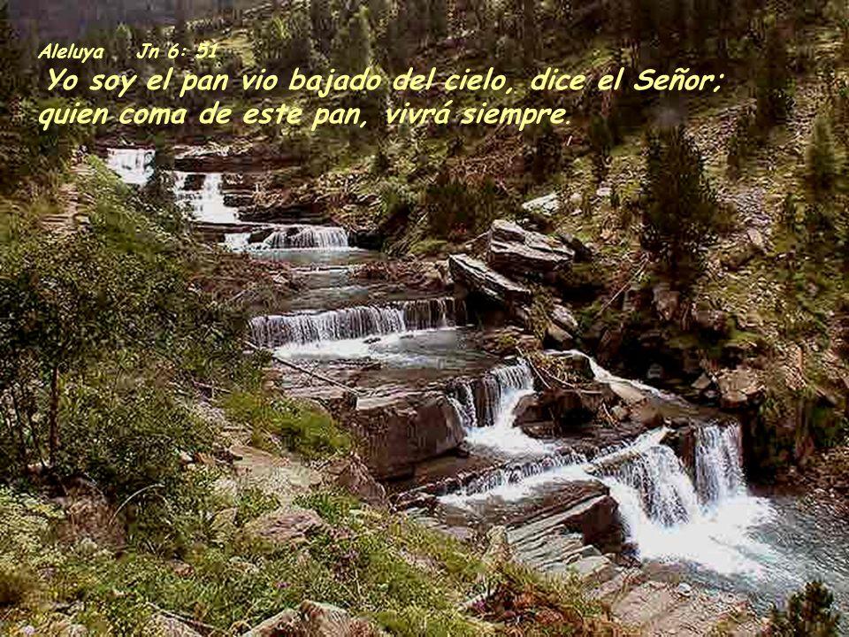 1C 10:16-17 El cáliz de bendición que bendecimos, ¿no nos hace entrar en comunión con la sangre de Cristo? Y el pan que partimos, ¿no nos hace entrar