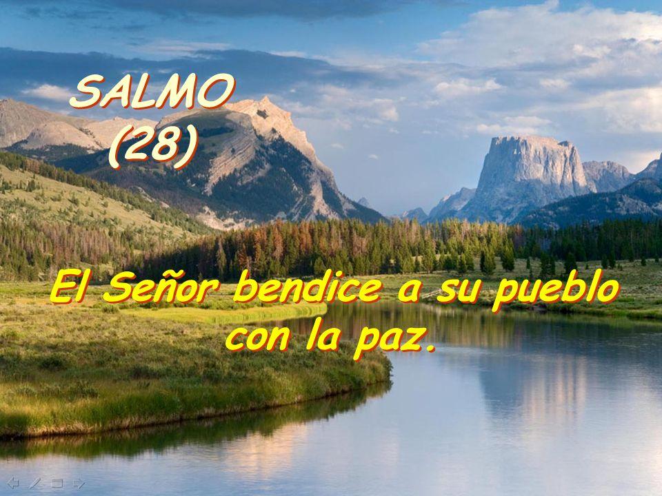 SALMO (28) SALMO (28) El Señor bendice a su pueblo con la paz.