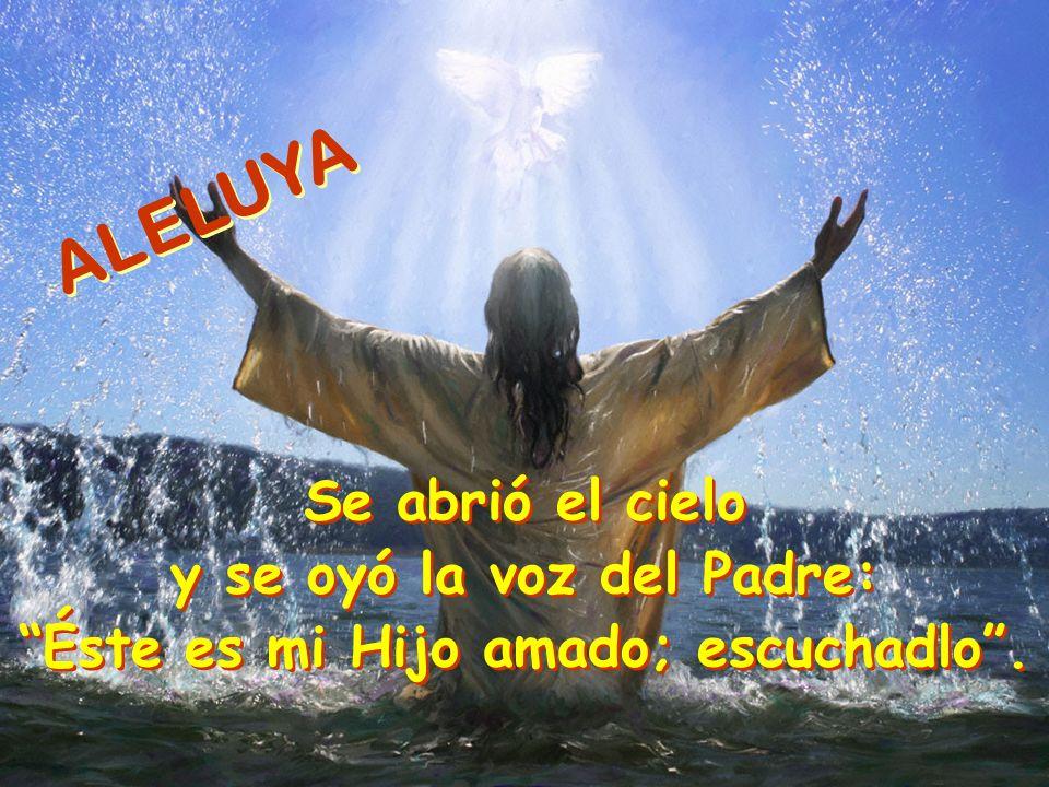 ALELUYA Se abrió el cielo y se oyó la voz del Padre: Éste es mi Hijo amado; escuchadlo.