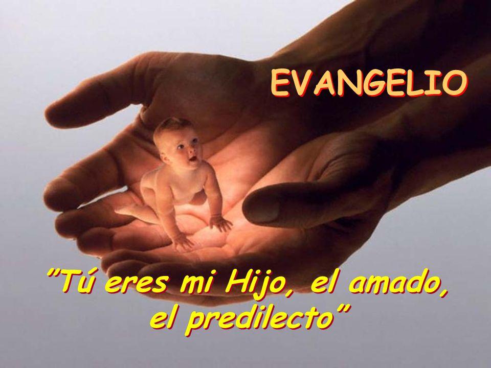ALELUYA Se abrió el cielo y se oyó la voz del Padre: Éste es mi Hijo amado; escuchadlo. Se abrió el cielo y se oyó la voz del Padre: Éste es mi Hijo a