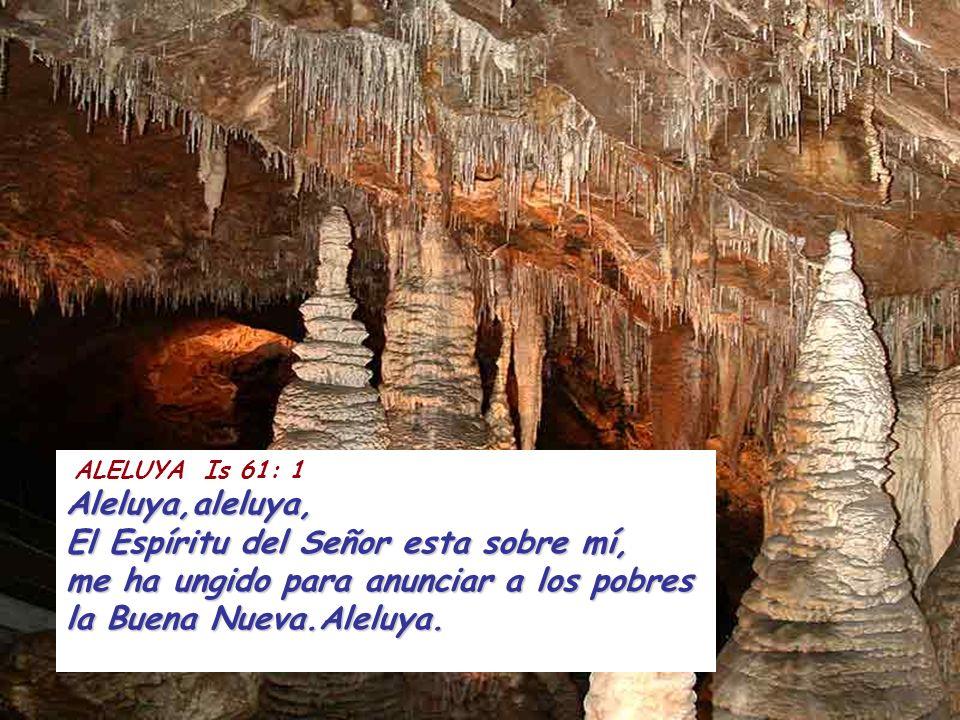 ALELUYA Is 61: 1Aleluya,aleluya, El Espíritu del Señor esta sobre mí, me ha ungido para anunciar a los pobres la Buena Nueva.Aleluya.