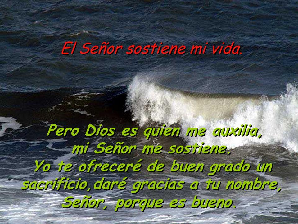 El Señor sostiene mi vida. Pues hombres soberbios y violentos se levantan contra mí, atentan contra mi vida sin tener presente a Dios.