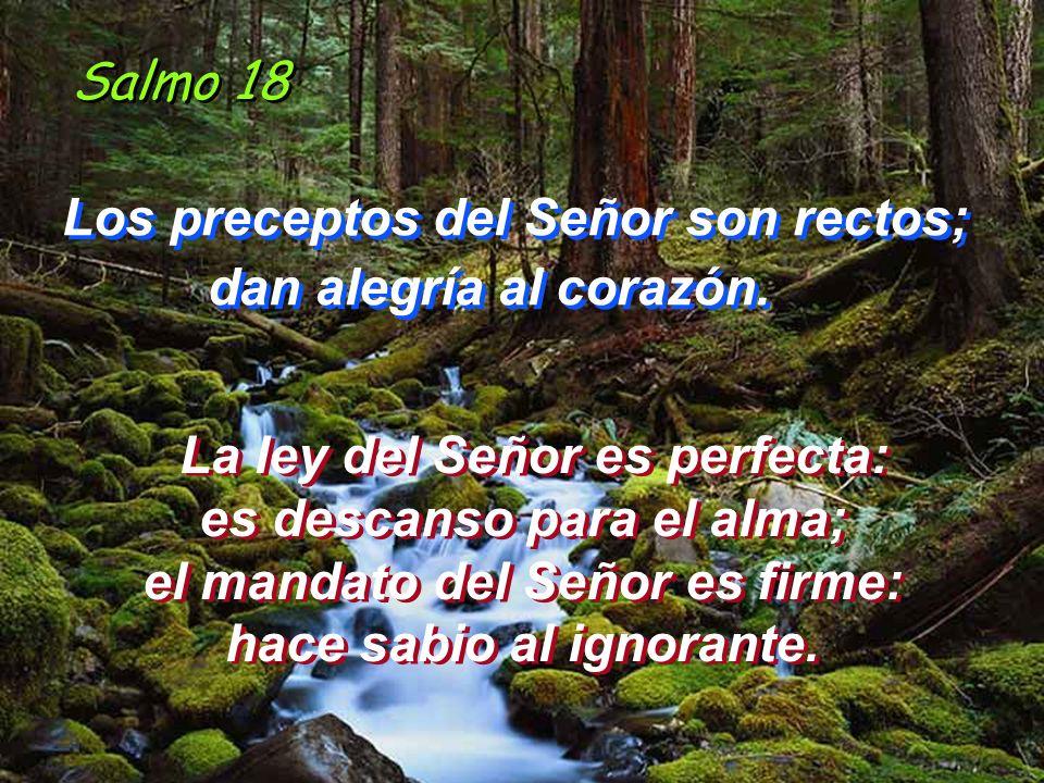 Salmo 18 Los preceptos del Señor son rectos; dan alegría al corazón.