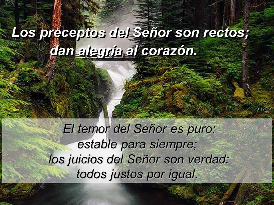 Salmo 18 Los preceptos del Señor son rectos; dan alegría al corazón. Los preceptos del Señor son rectos; dan alegría al corazón. La ley del Señor es p