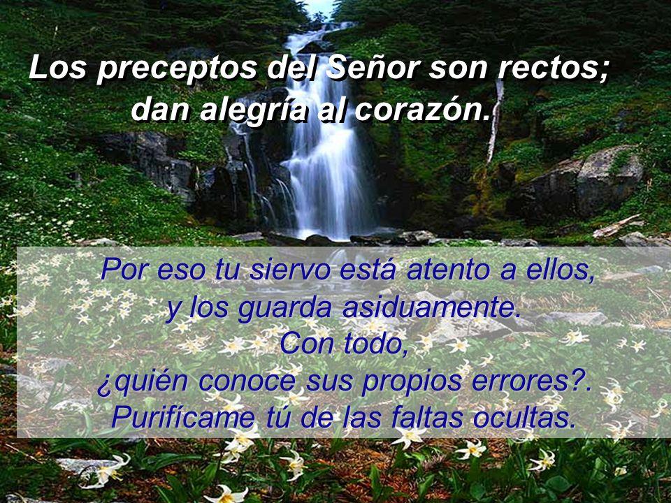 Los preceptos del Señor son rectos; dan alegría al corazón. Los preceptos del Señor son rectos; dan alegría al corazón. El temor del Señor es puro: es