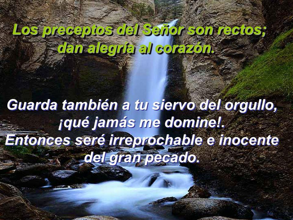 Los preceptos del Señor son rectos; dan alegría al corazón. Los preceptos del Señor son rectos; dan alegría al corazón. Por eso tu siervo está atento