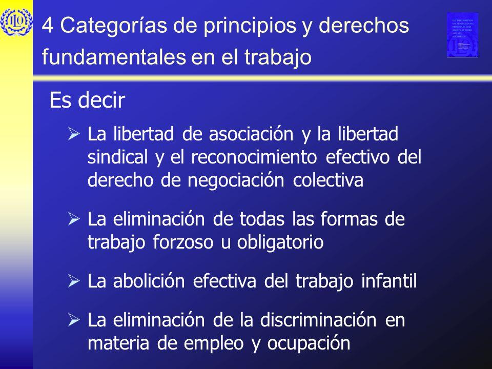 4 Categorías de principios y derechos fundamentales en el trabajo La libertad de asociación y la libertad sindical y el reconocimiento efectivo del de