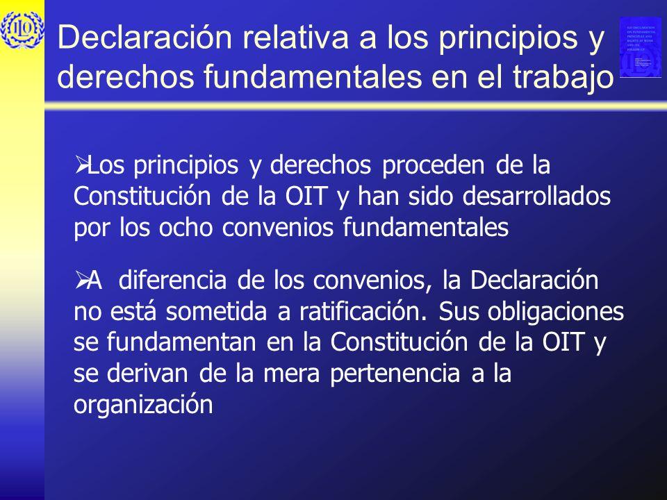 Declaración relativa a los principios y derechos fundamentales en el trabajo Los principios y derechos proceden de la Constitución de la OIT y han sid