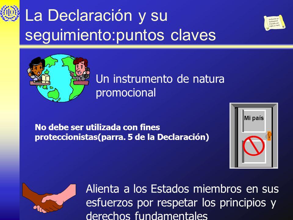 La Declaración y su seguimiento:puntos claves Un instrumento de natura promocional No debe ser utilizada con fines proteccionistas(parra. 5 de la Decl