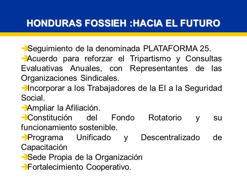 HONDURAS FOSSIEH :HACIA EL FUTURO Seguimiento de la denominada PLATAFORMA 25.