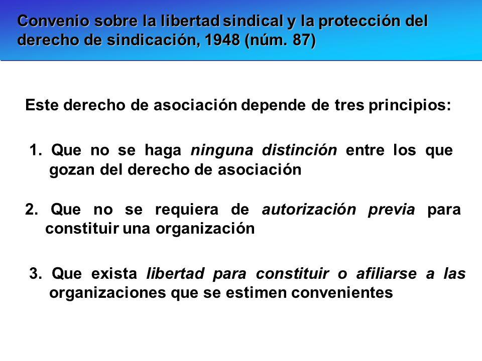 Convenio sobre la libertad sindical y la protección del derecho de sindicación, 1948 (núm. 87) Este derecho de asociación depende de tres principios: