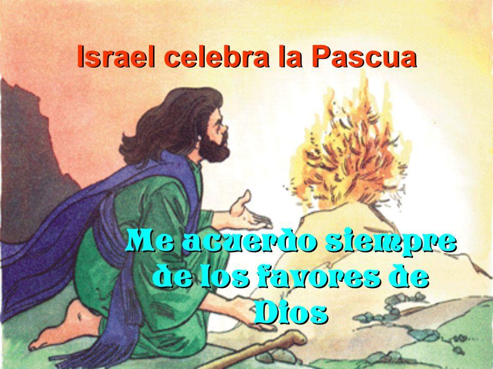 Israel celebra la Pascua Me acuerdo siempre de los favores de Dios