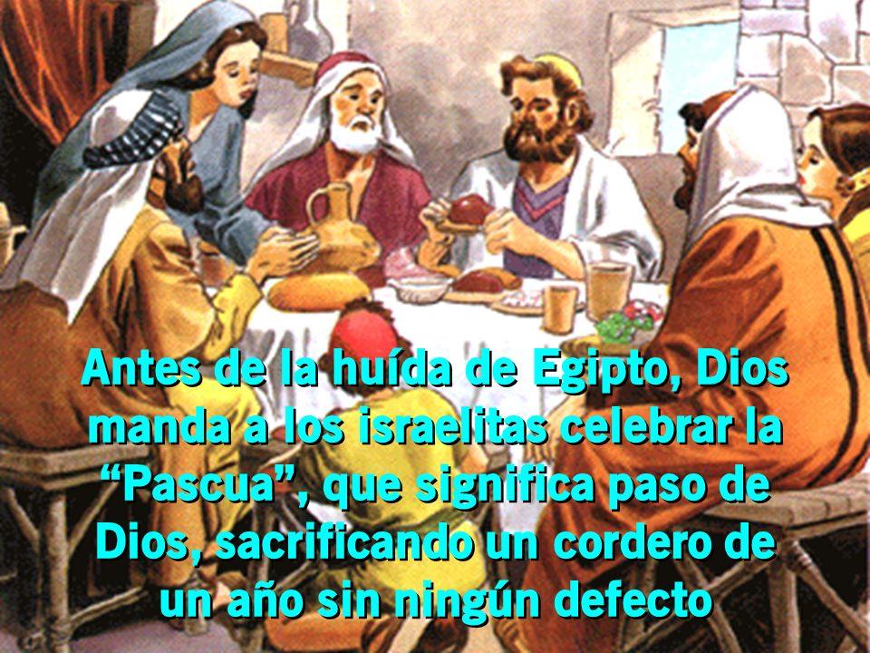 Antes de la huída de Egipto, Dios manda a los israelitas celebrar la Pascua, que significa paso de Dios, sacrificando un cordero de un año sin ningún