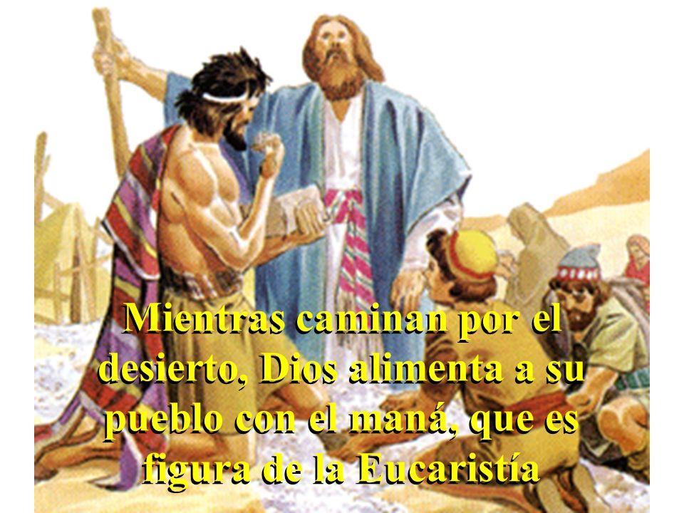 Mientras caminan por el desierto, Dios alimenta a su pueblo con el maná, que es figura de la Eucaristía