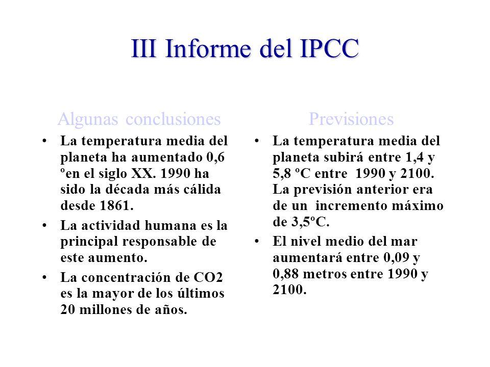 III Informe del IPCC Algunas conclusiones La temperatura media del planeta ha aumentado 0,6 ºen el siglo XX.