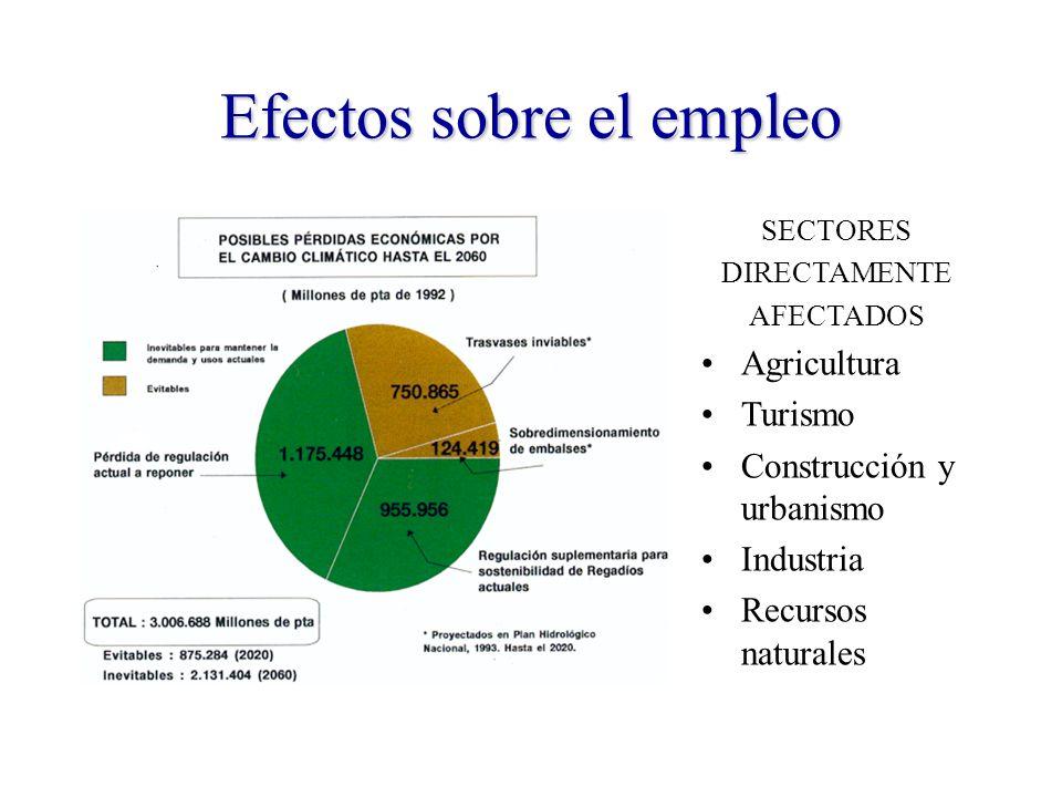 Efectos sobre el empleo SECTORES DIRECTAMENTE AFECTADOS Agricultura Turismo Construcción y urbanismo Industria Recursos naturales