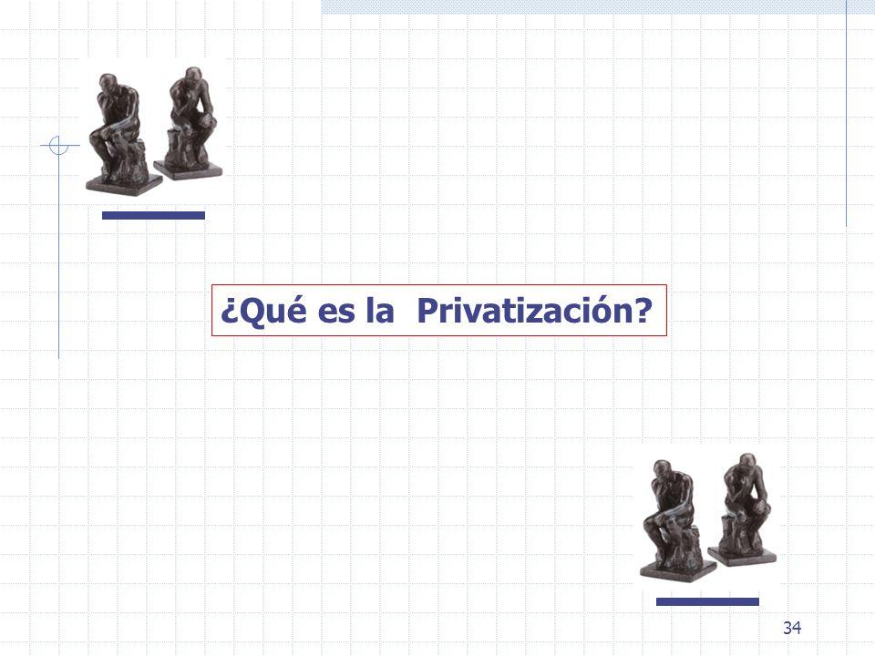 34 ¿Qué es la Privatización?