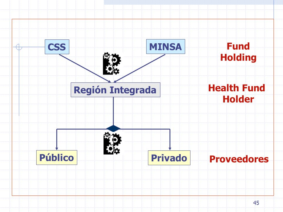 45 CSS MINSA Fund Holding Región Integrada Health Fund Holder Proveedores Público Privado