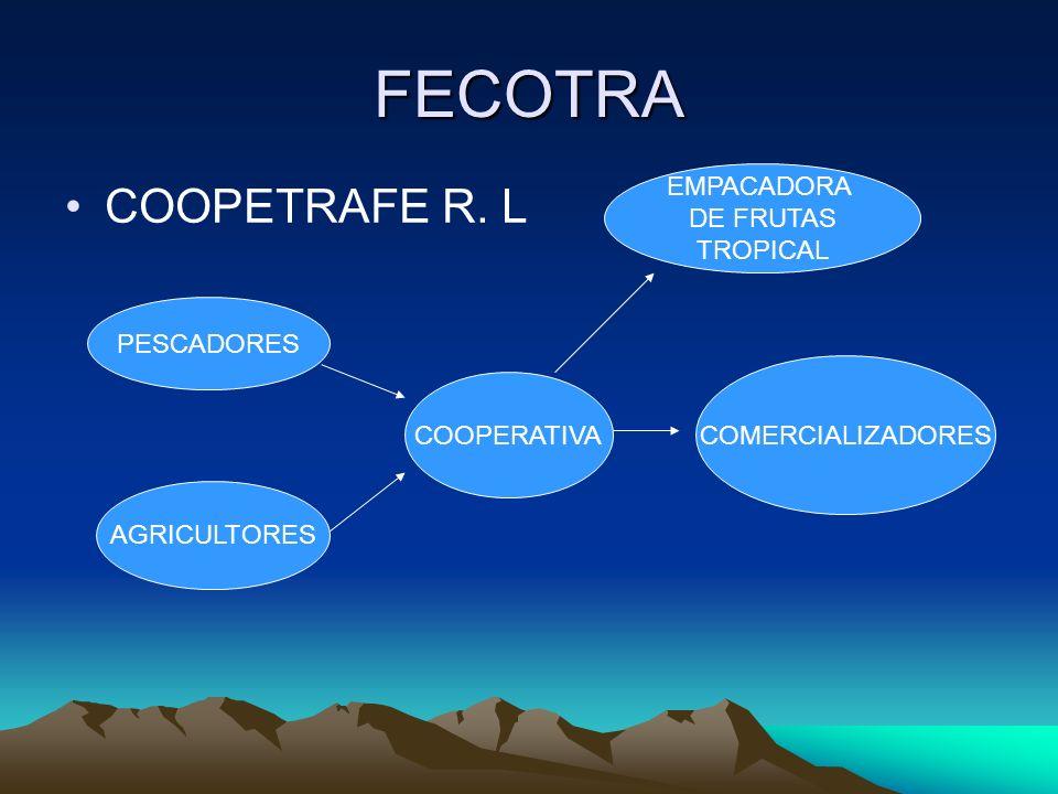 FECOTRA COOPETRAFE R. L PESCADORES AGRICULTORES COOPERATIVA COMERCIALIZADORES EMPACADORA DE FRUTAS TROPICAL