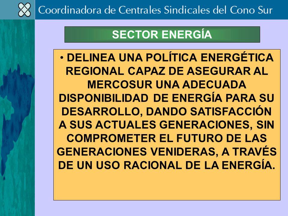 SECTOR ENERGÍA DELINEA UNA POLÍTICA ENERGÉTICA REGIONAL CAPAZ DE ASEGURAR AL MERCOSUR UNA ADECUADA DISPONIBILIDAD DE ENERGÍA PARA SU DESARROLLO, DANDO SATISFACCIÓN A SUS ACTUALES GENERACIONES, SIN COMPROMETER EL FUTURO DE LAS GENERACIONES VENIDERAS, A TRAVÉS DE UN USO RACIONAL DE LA ENERGÍA.