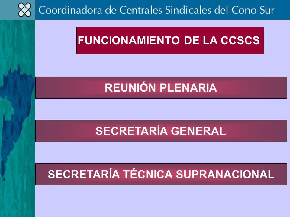 REUNIÓN PLENARIA SECRETARÍA TÉCNICA SUPRANACIONAL SECRETARÍA GENERAL FUNCIONAMIENTO DE LA CCSCS