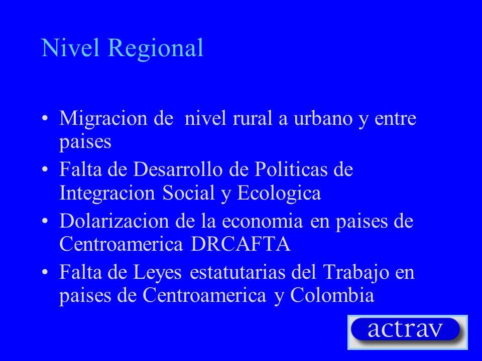 Nivel Regional Migracion de nivel rural a urbano y entre paises Falta de Desarrollo de Politicas de Integracion Social y Ecologica Dolarizacion de la economia en paises de Centroamerica DRCAFTA Falta de Leyes estatutarias del Trabajo en paises de Centroamerica y Colombia