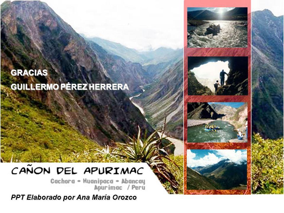 GRACIAS GUILLERMO PÉREZ HERRERA PPT Elaborado por Ana María Orozco