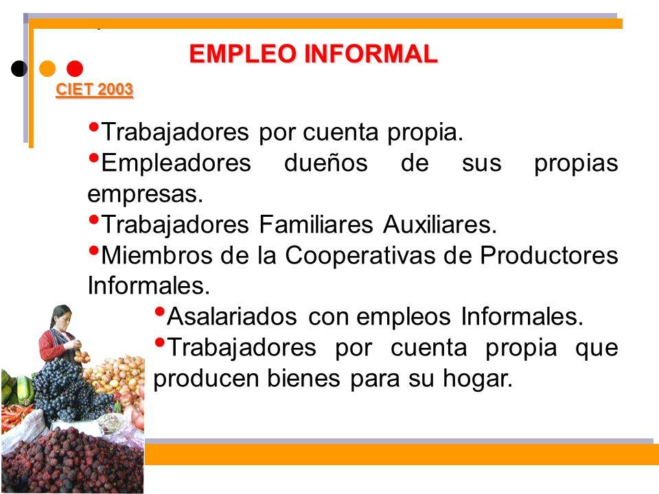 EMPLEO INFORMAL CIET 2003 Trabajadores por cuenta propia. Empleadores dueños de sus propias empresas. Trabajadores Familiares Auxiliares. Miembros de