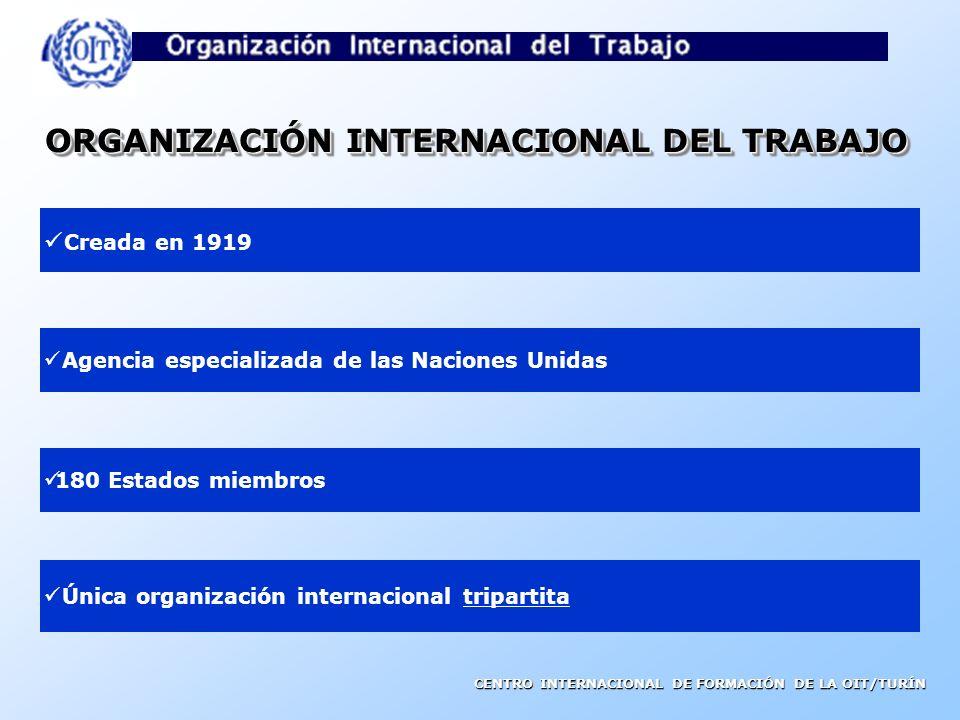 CENTRO INTERNACIONAL DE FORMACIÓN DE LA OIT/TURÍN LA ORGANIZACIÓN INTERNACIONAL DEL TRABAJO Y LAS NORMAS INTERNACIONALES DEL TRABAJO