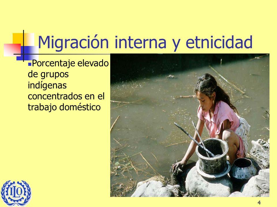 4 Migración interna y etnicidad Porcentaje elevado de grupos indígenas concentrados en el trabajo doméstico