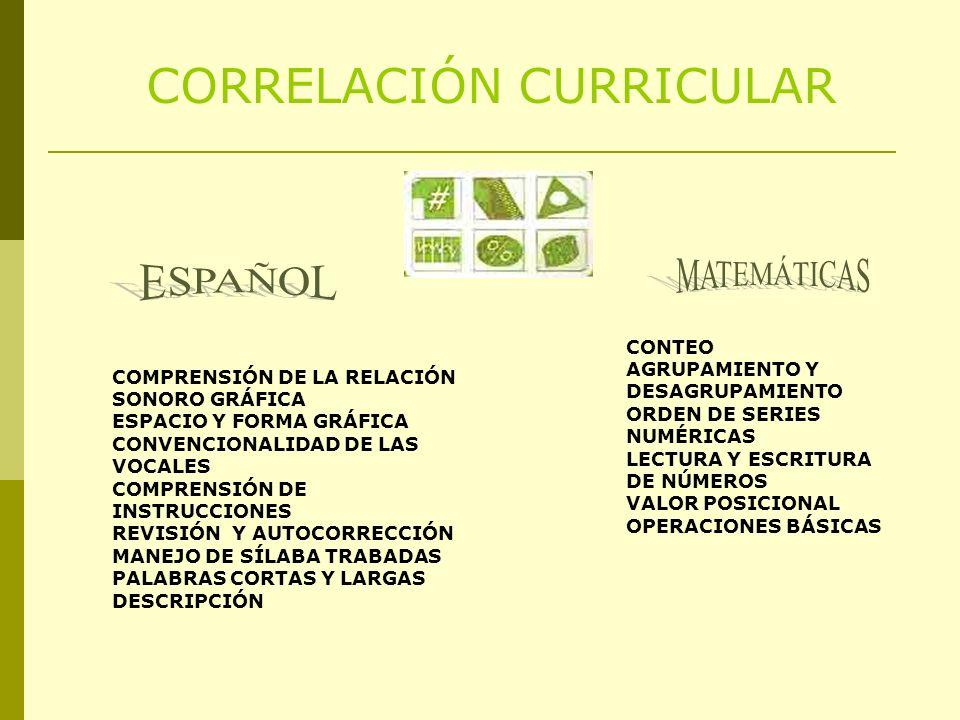 CORRELACIÓN CURRICULAR COMPRENSIÓN DE LA RELACIÓN SONORO GRÁFICA ESPACIO Y FORMA GRÁFICA CONVENCIONALIDAD DE LAS VOCALES COMPRENSIÓN DE INSTRUCCIONES REVISIÓN Y AUTOCORRECCIÓN MANEJO DE SÍLABA TRABADAS PALABRAS CORTAS Y LARGAS DESCRIPCIÓN CONTEO AGRUPAMIENTO Y DESAGRUPAMIENTO ORDEN DE SERIES NUMÉRICAS LECTURA Y ESCRITURA DE NÚMEROS VALOR POSICIONAL OPERACIONES BÁSICAS